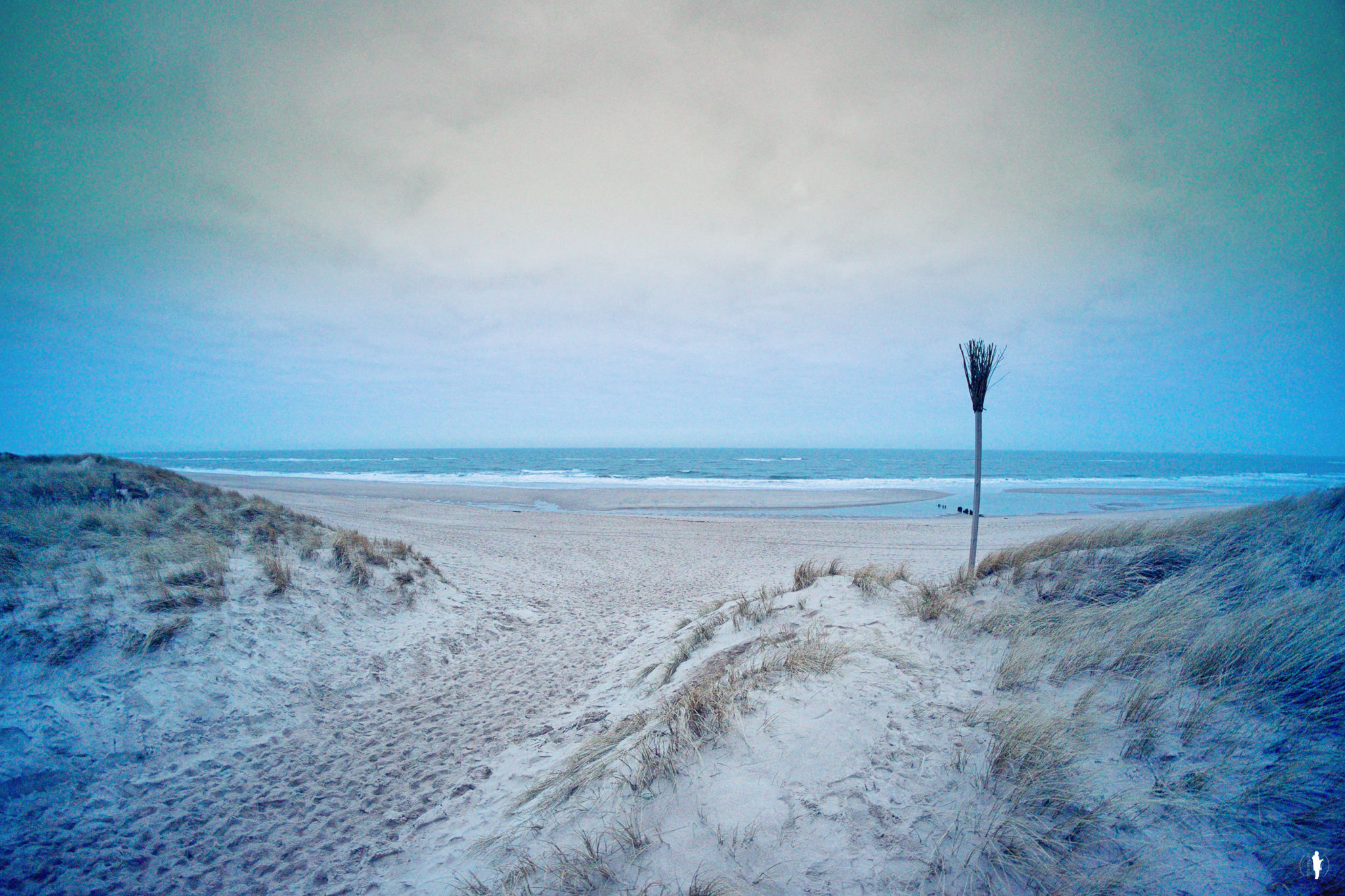 Sylt-March15-6